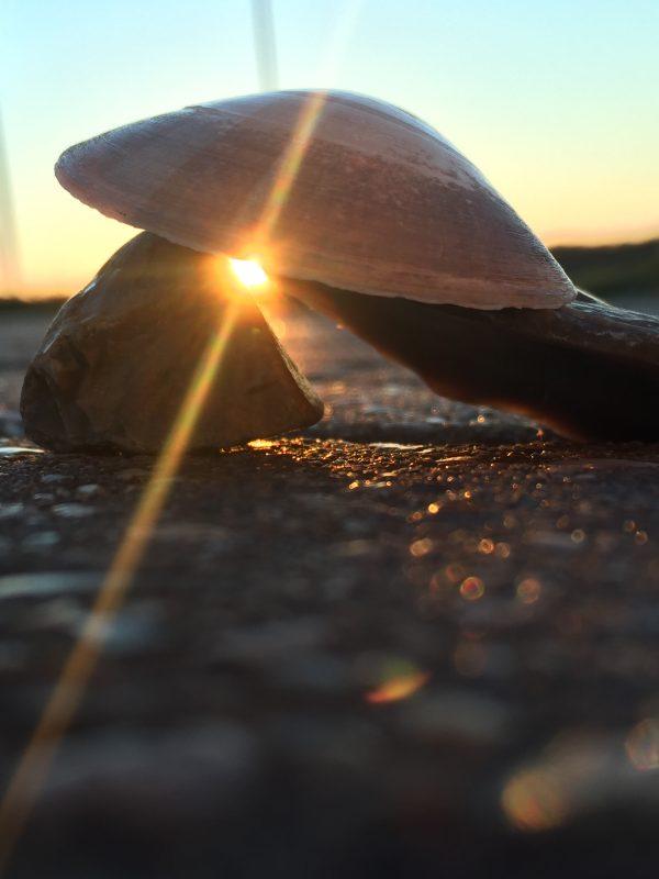 Beach Sun by Anna